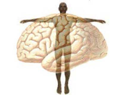 Brain vs Body